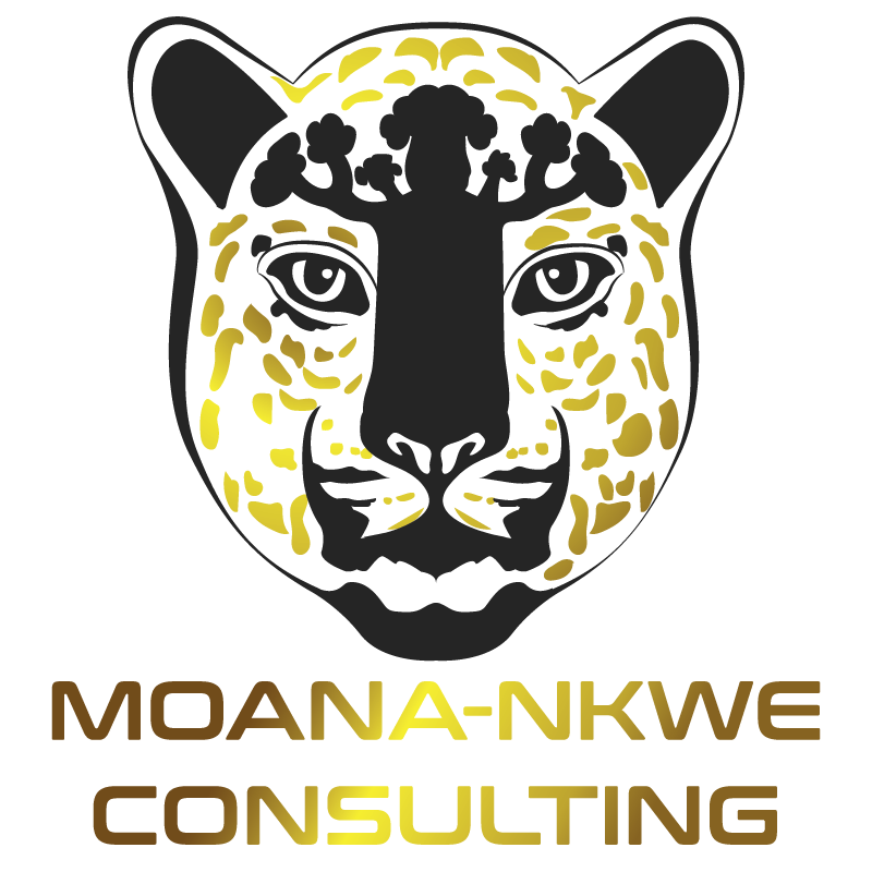 Buania Holdings sarl - Logo A BonW-02-min